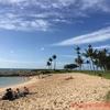 来月のハワイ、ガチで準備7 ルアウの予約とかね。
