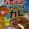 亀田製菓「夏のやみつきカレー」