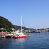 大鹿さんが江上にいることが解る。五島列島 奈良尾港→奈留島港