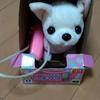 子犬のおもちゃを買ったら、けっこう愛されている件