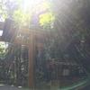 あなたがずっと知りたかった神道のハナシ、伝えます。 2018年4月14日(土)、大祓詞(おおはらへことば)の勉強会@東京・飯田橋。