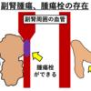 【副腎皮質腫瘍】その① ~挙動・症状・診断方法~