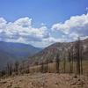 燃えるヨセミテ国立公園