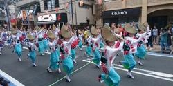 第41回神奈川大和阿波踊りに行ってきた!