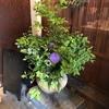 京都 四条麩屋町「omo cafe」〜京町家で嗅ぐわう甘い香り〜