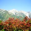2018年9月 八方尾根からの五龍岳でソロアルプスデビュー!紅葉の遠見尾根は長いけど変化に富んだ尾根道で歩くのが楽しい!