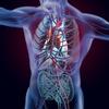 理学療法士・作業療法士|心不全患者の初回介入時の評価ポイント