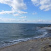 野間の海岸