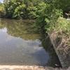 『西ノ谷池』静岡県掛川野池群バス釣り完全攻略マップ