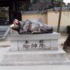 太宰府天満宮に行ってきました。