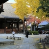 京都随一の紅葉の名所「永観堂」