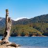 今年の有峰湖:有峰2021