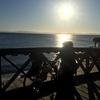 ダハブまでふらっと自転車漕いで行きます、&ブログ終了のお知らせ
