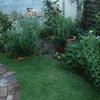 19時の庭