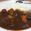【正直すぎる食レポ】三鷹のマイカリー食堂の欧風野菜カレーを採点してみた!