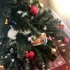 クリスマスツリー、いつ飾る?