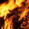 なんでカリフォルニア州はあんなに山火事が多いの?