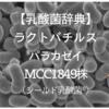 【乳酸菌辞典】ラクトバチルス・パラカゼイ・MCC1849株(シールド乳酸菌)とは?