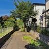 小野崎西児童公園の謎の小道~つくば市とその周辺の風景写真案内(128)