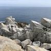 これが高知の最果ての地... : 大月町・大堂海岸の絶景