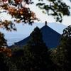奈良公園 秋を歩く/物見遊山に黄、赤、深紅の木の葉。濃淡さまざまでうっとり。天高く人も肥えて・・・!