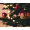 クリスマスはどうして12月25日?クリスマスの豆知識を紹介!