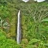 癒しの滝「アカカフォールズ」と聖地「ワイピオ渓谷」を見てからヒロからコナ地区へ!!