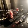 アナログレコードプレーヤー VM型・MM型・MC型・MONO専用 カートリッジ交換で音楽を楽しむ