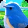 鳥好きにおすすめのiPhone・Androidゲーム、アプリ5選