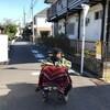 「ジョゼと虎と魚たち」吉沢さんが乳母車に乗っているのがツボである