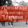 """「上野動物園」をFUJIFILM X-T2とフィルムシュミレーション""""ACROS""""で撮る"""