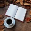 小説はタイトルや表紙でどの程度内容を開示すべきなのか