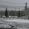 【札幌競馬場】 内覧会を開催