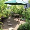 屋上庭園に初夏の風