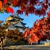紅葉に染まる国宝・彦根城!見どころやおすすめの撮影スポットを紹介