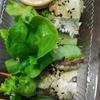 イワシの生春巻きとカフェラテやて、東南アジアな朝食や。
