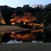 冬の六義園。日本の庭園のイルミネーションを楽しもう