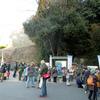 城山探鳥例会 2014年1月