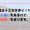 【東海道五十三次を歩く!14日目】人違いもあるけど、城違いもあります。