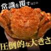 【初体験】楽天で人気の超特大ジャンボ毛蟹の実食レビュー~1kg以上とあったけど実際に計量した結果は?~【PR】
