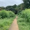 【ランニング&ご飯】たまプラーザ・あざみ野・鷺沼・溝の口周辺の緑あふれるランスポット&ご飯
