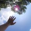 夏の宝篋山登ってきた!熱・暑すぎて頭が・・【カメラ散歩・小田城コース】