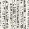 エジプト分数形式