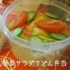 【麺類をお弁当に持っていくコツ】サラダうどん・マヨネーズパスタのおいしいレシピをご紹介!