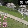 春休み  桜 【酪農の里(ヤギ)もお花見?】空撮 ドローン男子