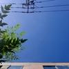 作曲工房 朝の天気 2018-08-22(水)快晴