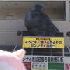 【ヨーネル】子どもの日新聞撮影会 in 大阪