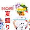 博多【夏の盛モリ撮影会!】&8月撮影会お知らせー👍✨