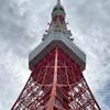 チョ〜〜久しぶりに「東京タワー」へ