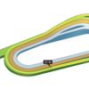 第384R 京都競馬 日経新春杯(GⅡ) 参考データ